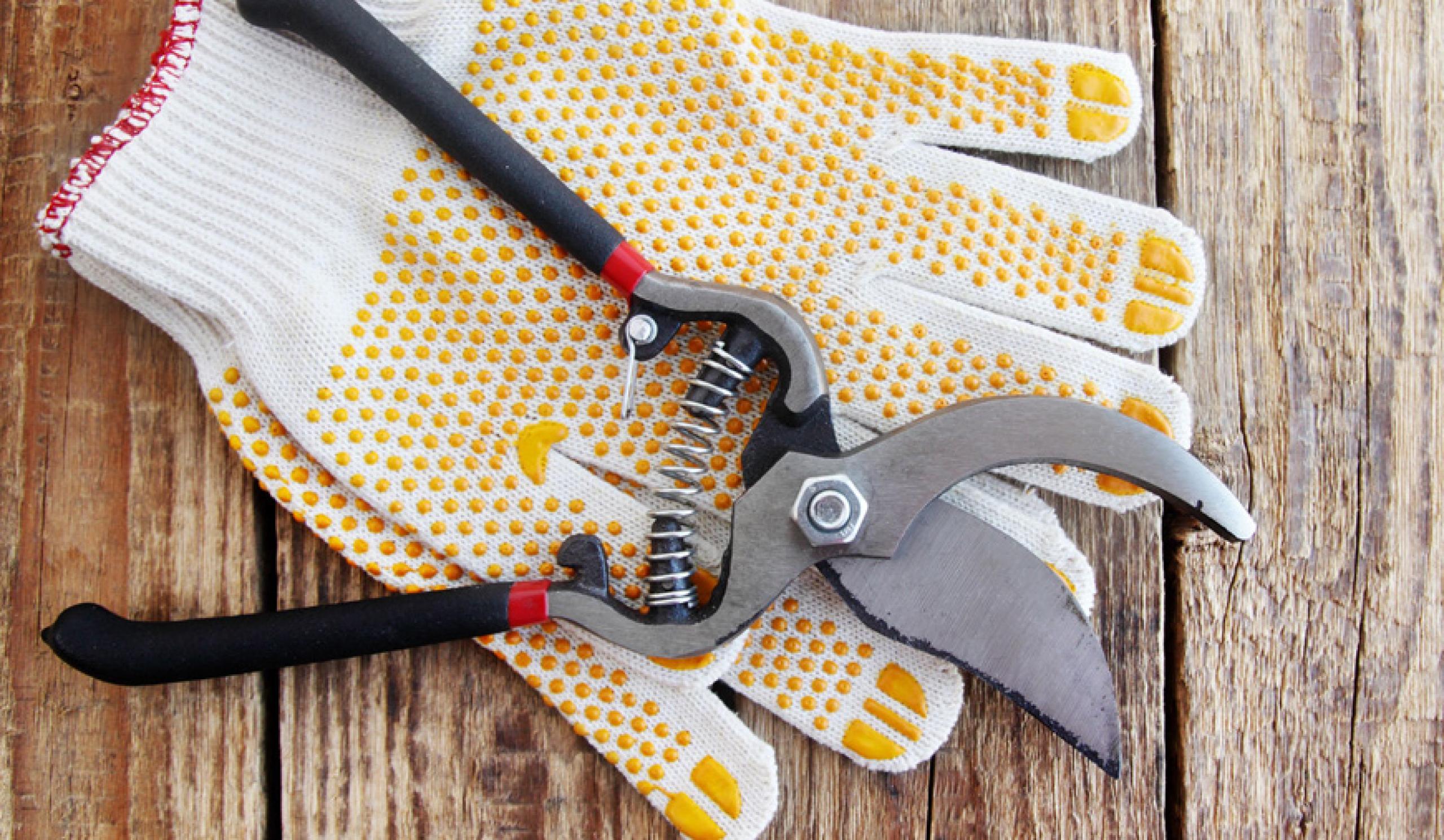 Gartenpflege und Arbeiten im Freien